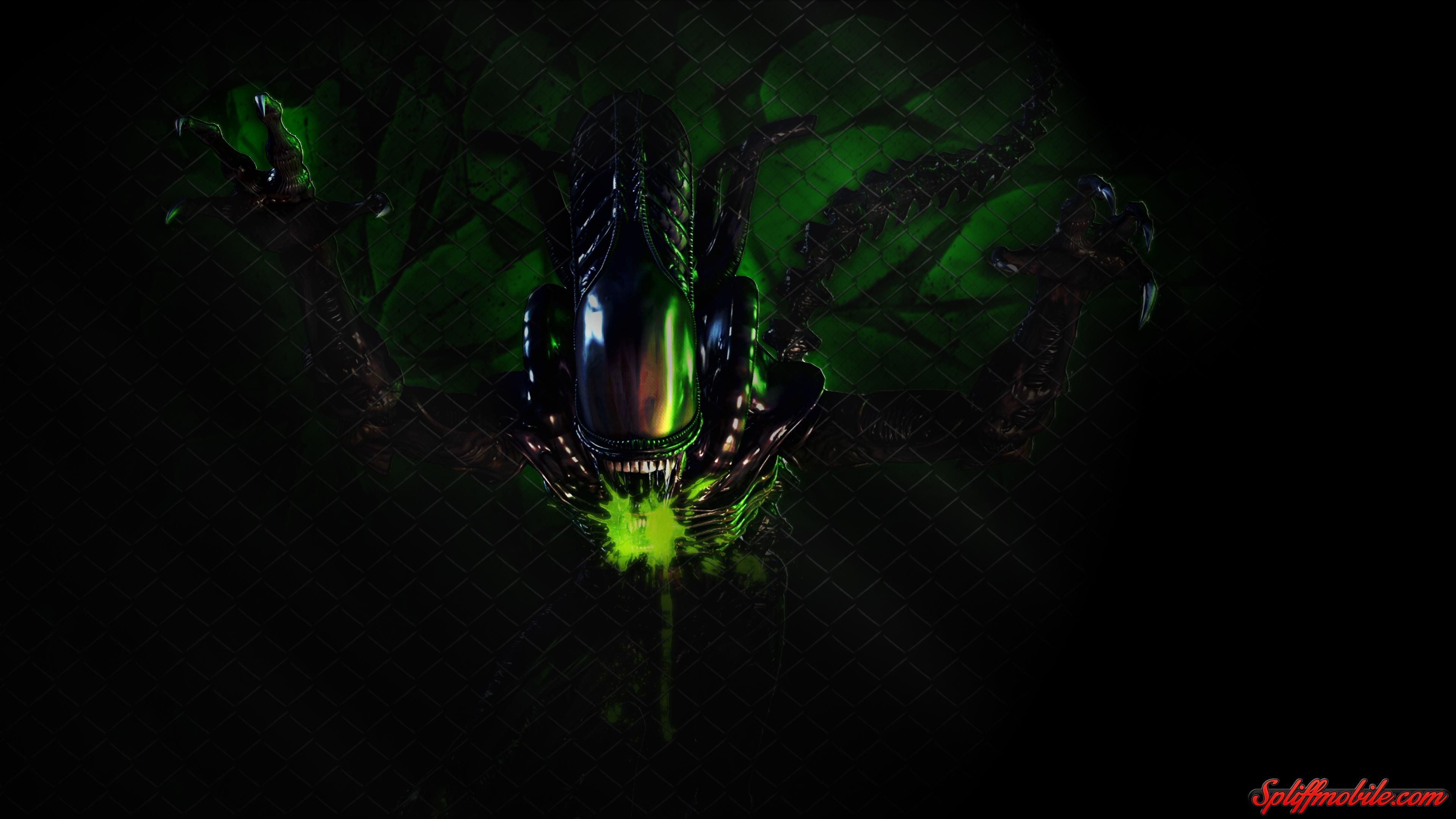HD Alien Wallpaper 3840x2160