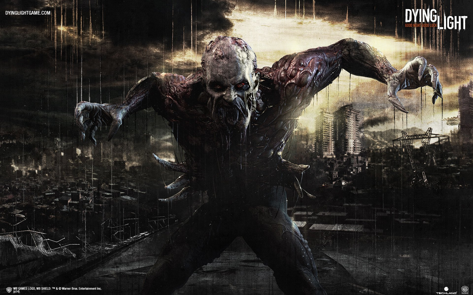 93 Dying Light HD Wallpapers Background Images 1920x1200
