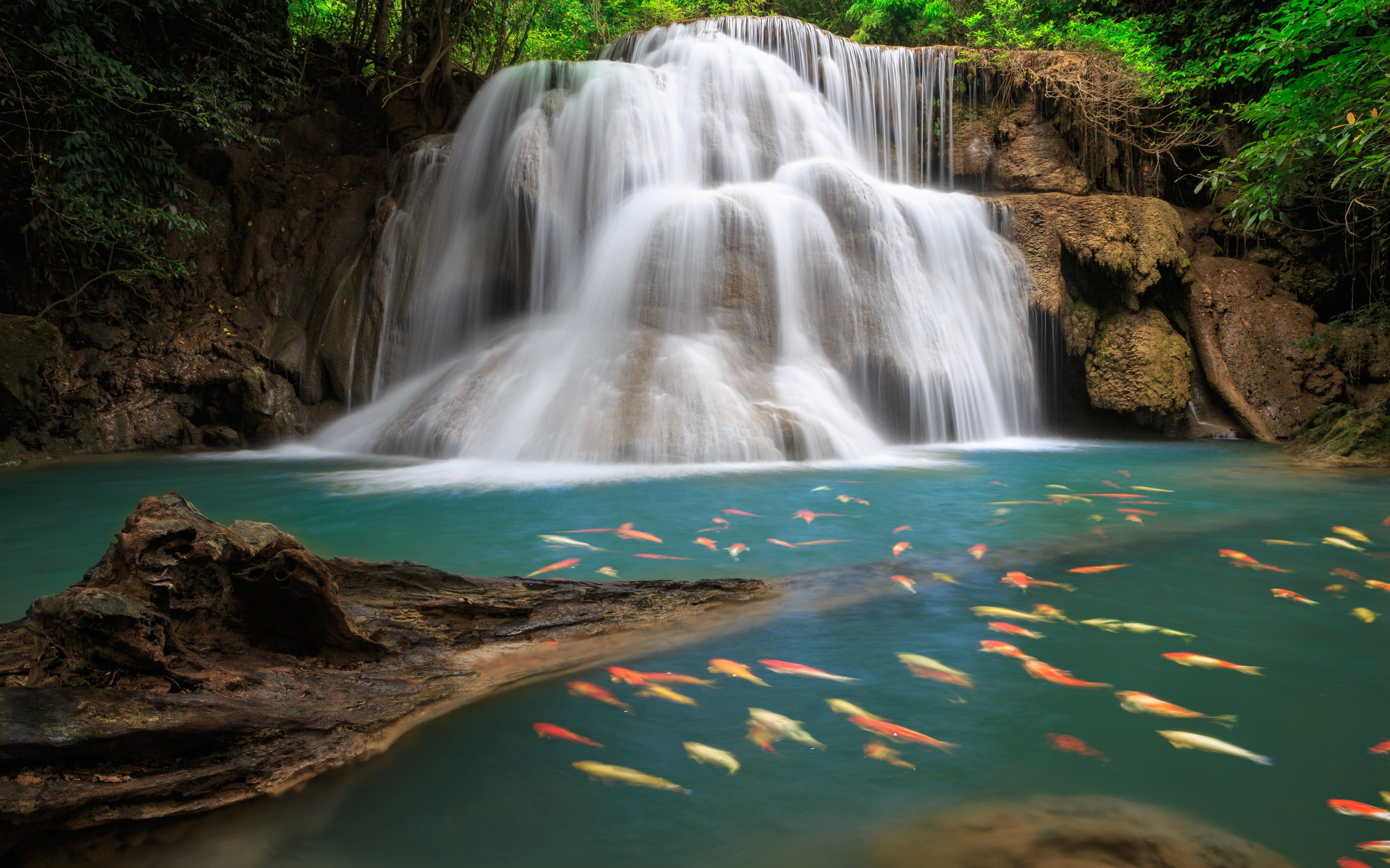 Animated Waterfall Wallpaper For Windows 7 2880x1800