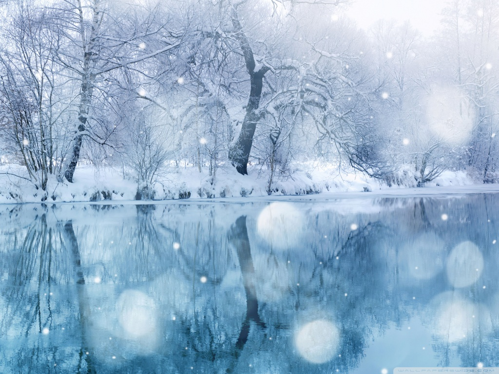 Winter Snowfall 4K HD Desktop Wallpaper for 4K Ultra HD TV 1024x768