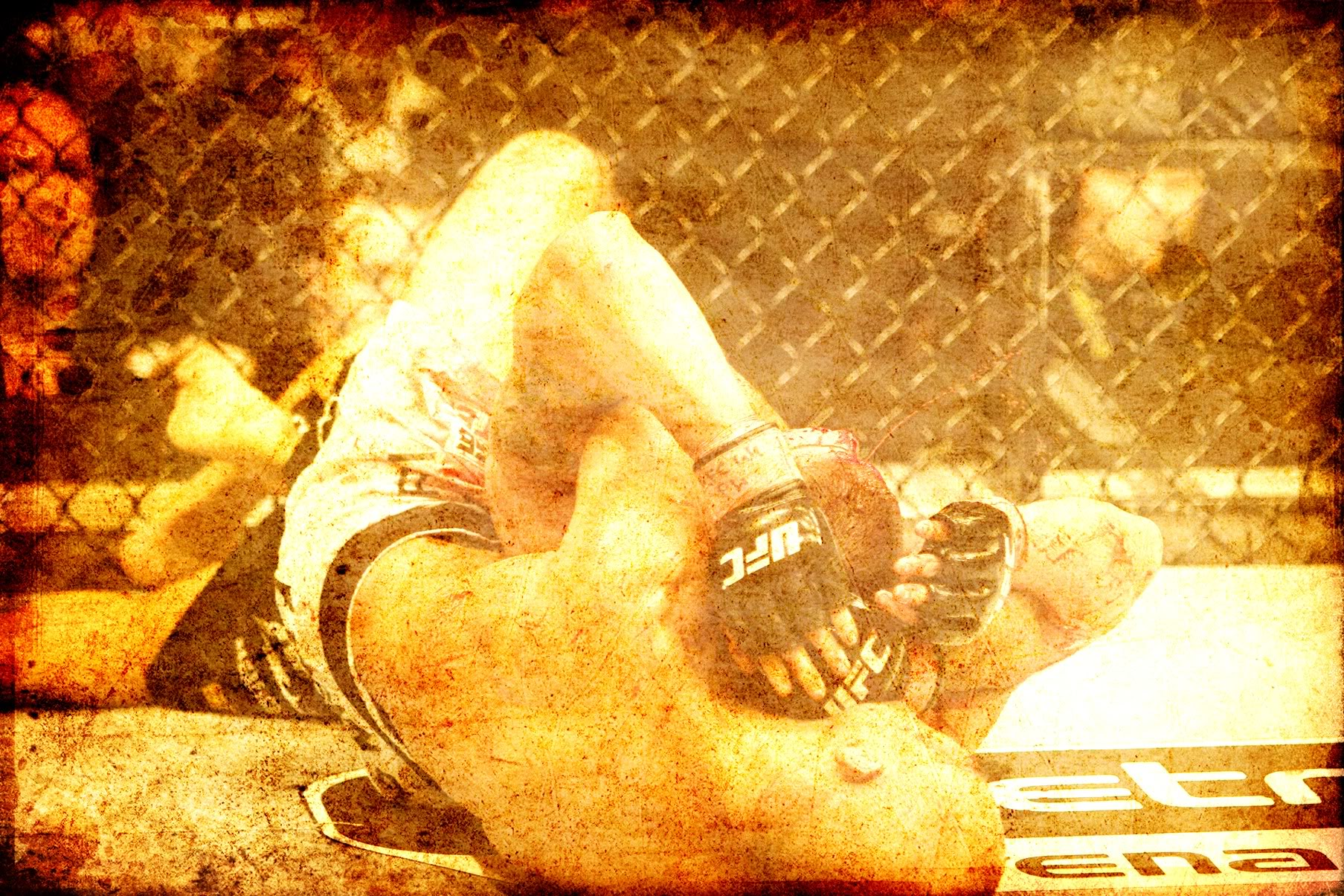 UFC 80 Wallpaper Background Theme Desktop 1807x1205