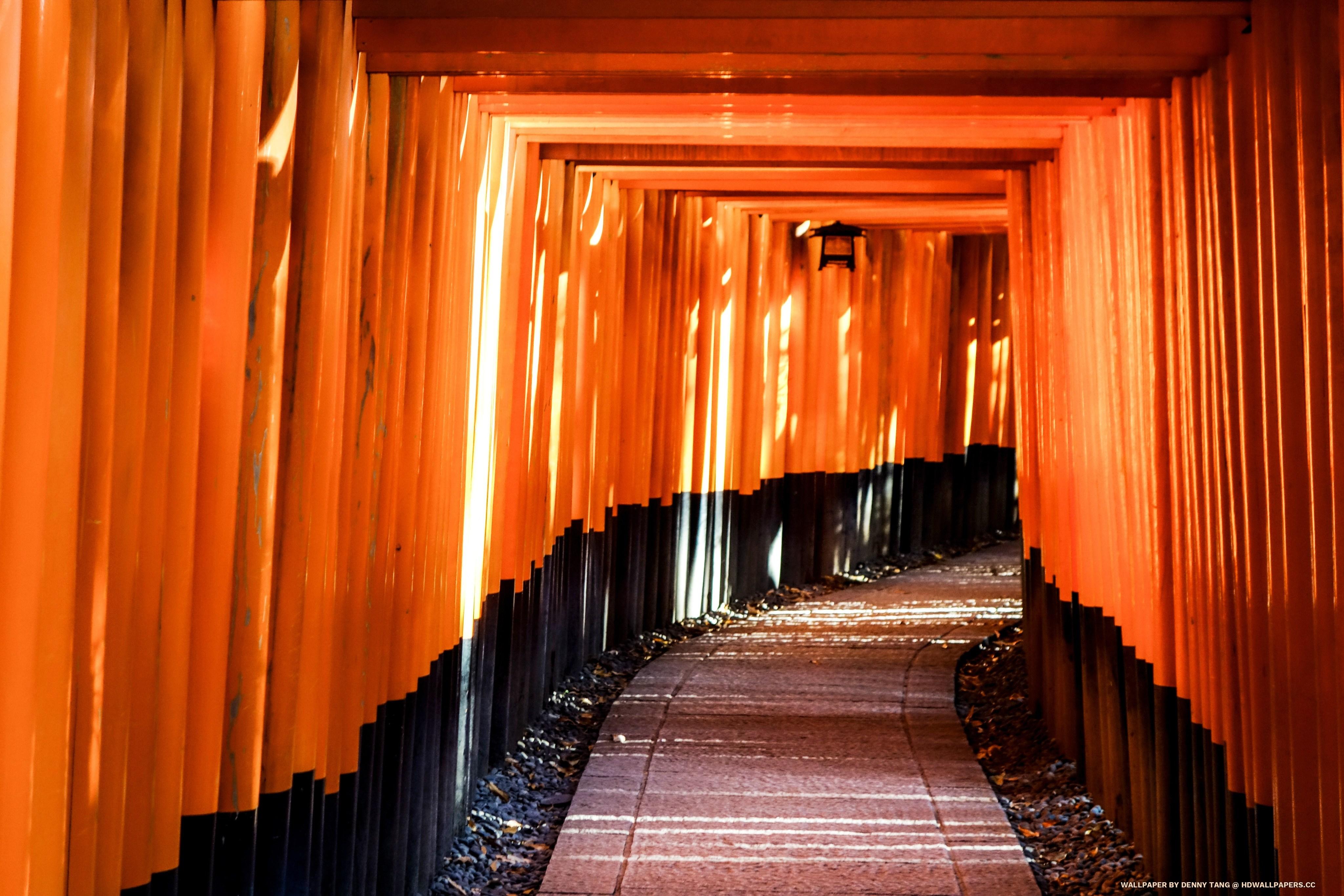 Fushimi Inari Taisha   HD Wallpapers 4098x2732