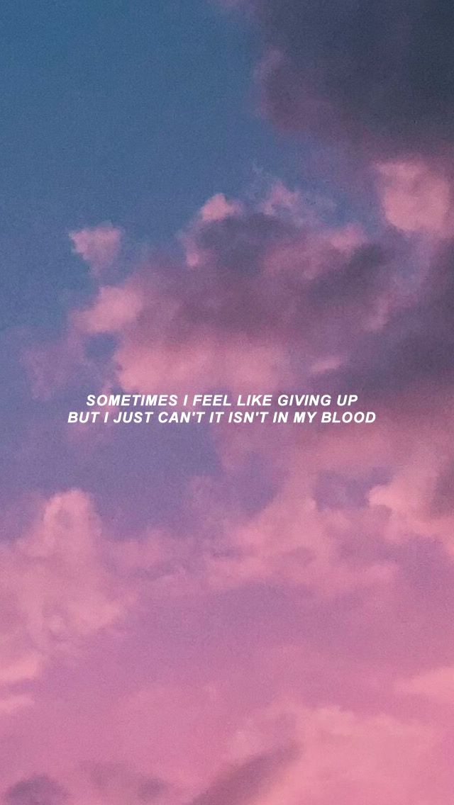 Shawn Mendes Lyrics Wallpaper 59 image collections of 640x1136