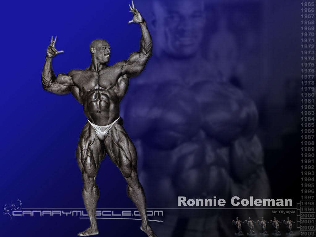 Mr Olympia wallpapers Reupload them 1024x768