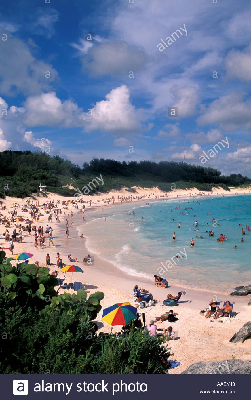 Bermuda Pink sand Beach Horseshoe Bay symbol blue sky background 872x1390