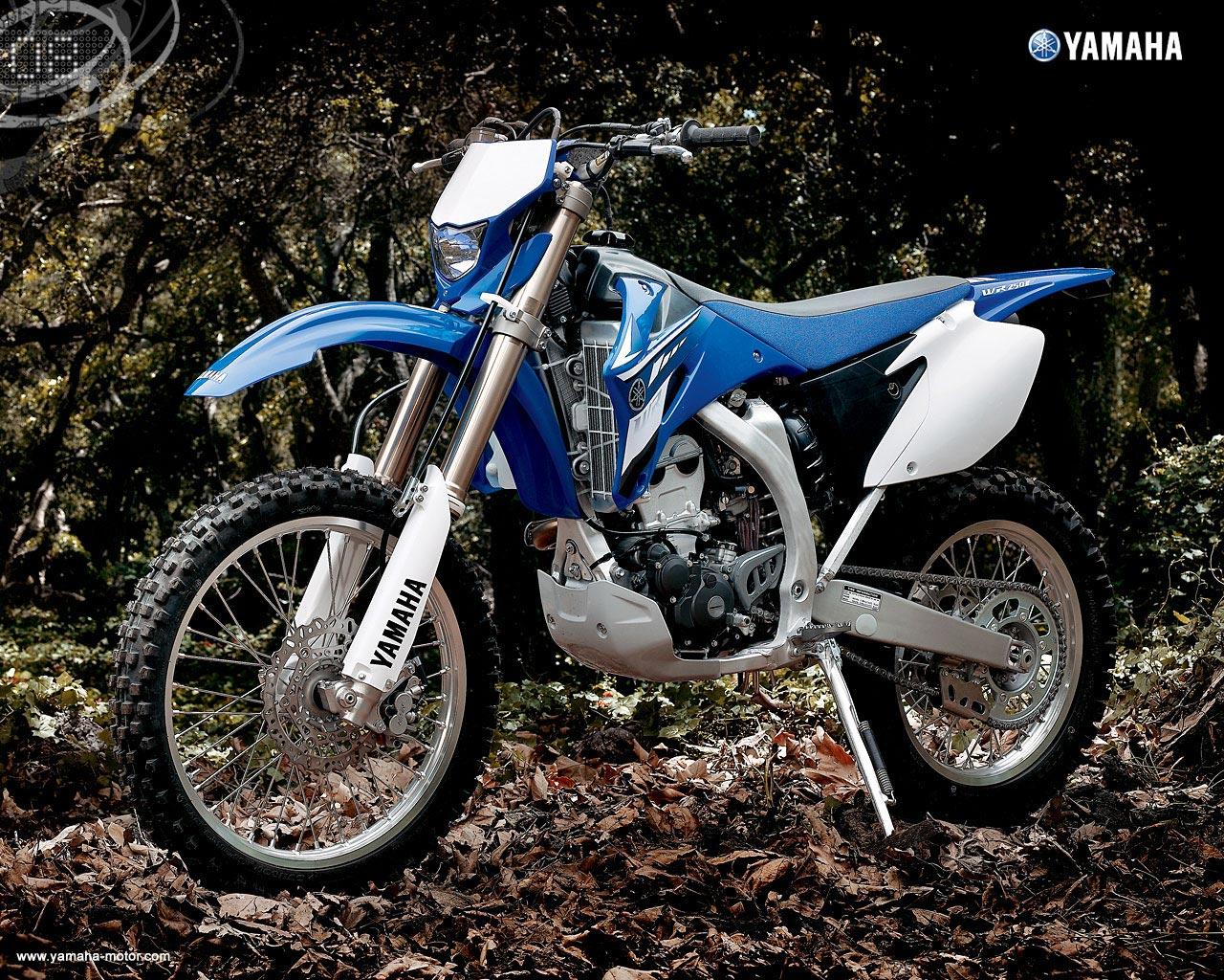 2008 Yamaha WR250F 1280x1024