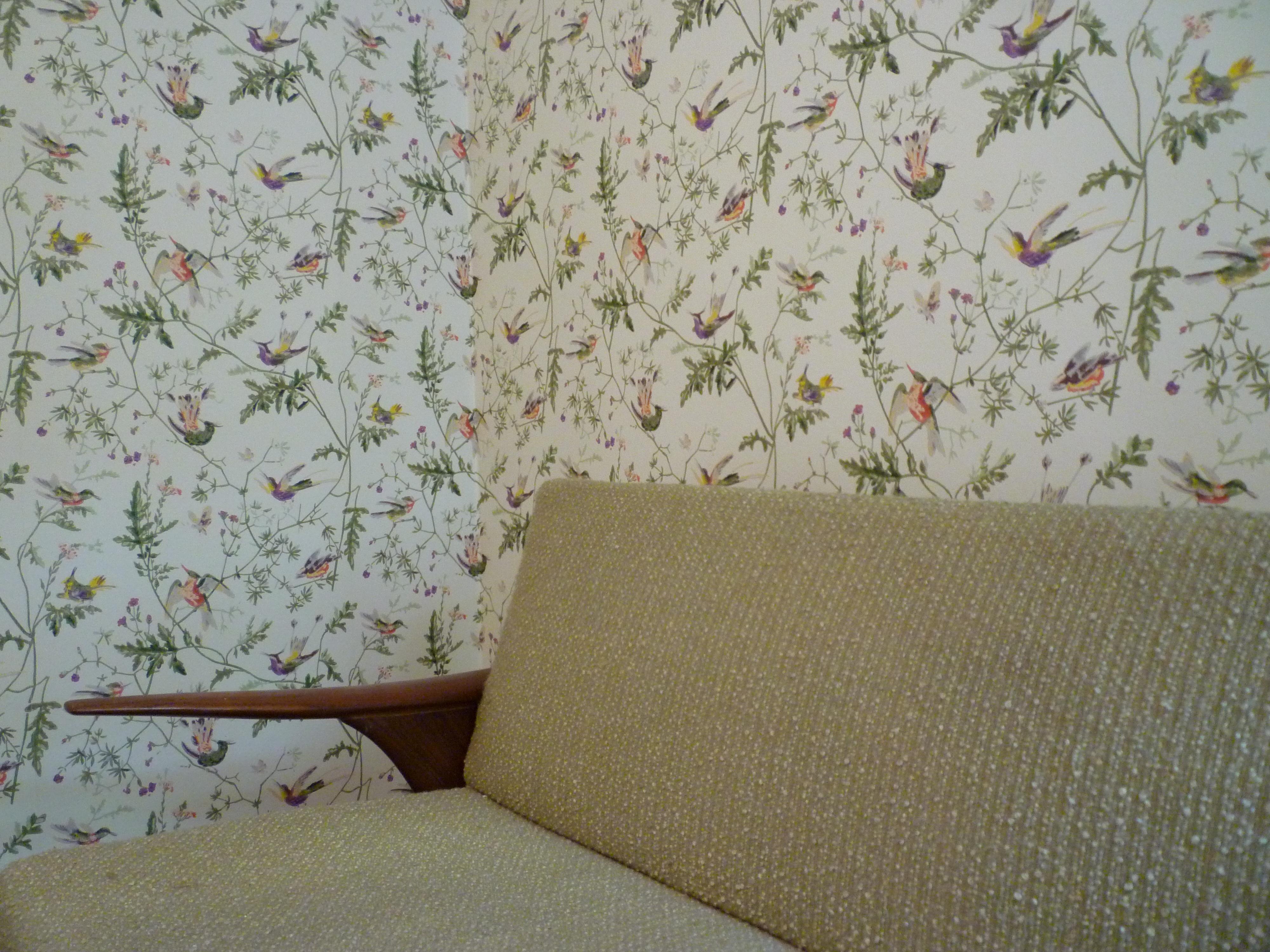 Hummingbird Wallpaper Private Residence