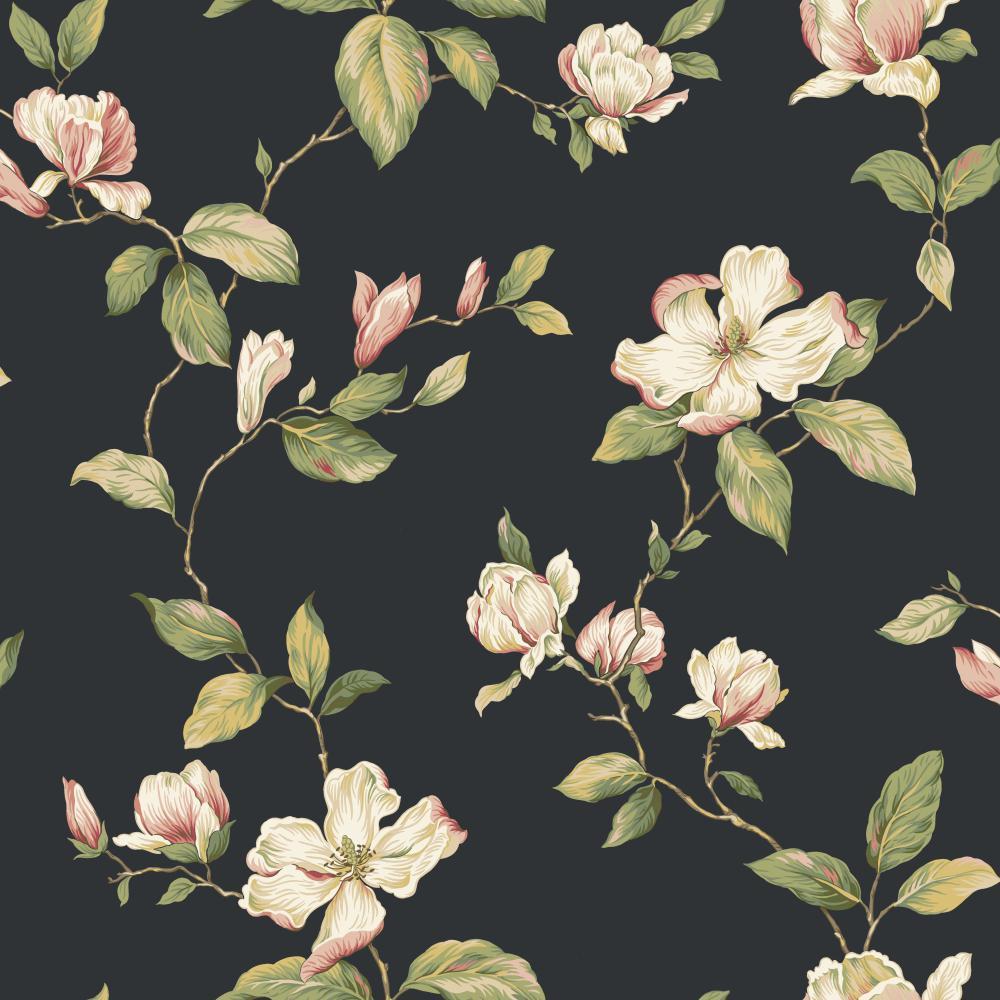 Blooms Magnolia Wallpaper   Wallpaper Border Wallpaper inccom 1000x1000
