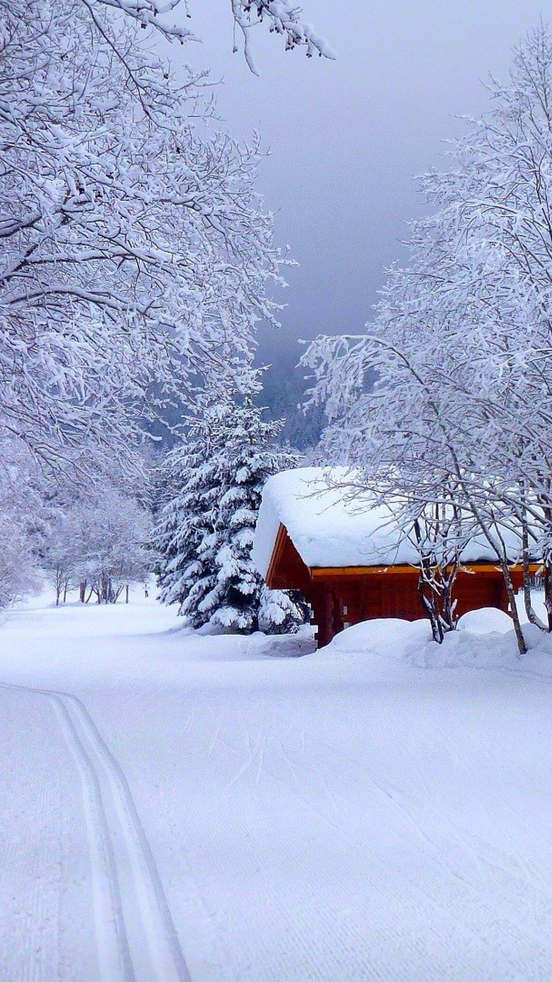 Snow Road House 4K Ultra HD wallpaper 4k WallpaperNet 1080x1920