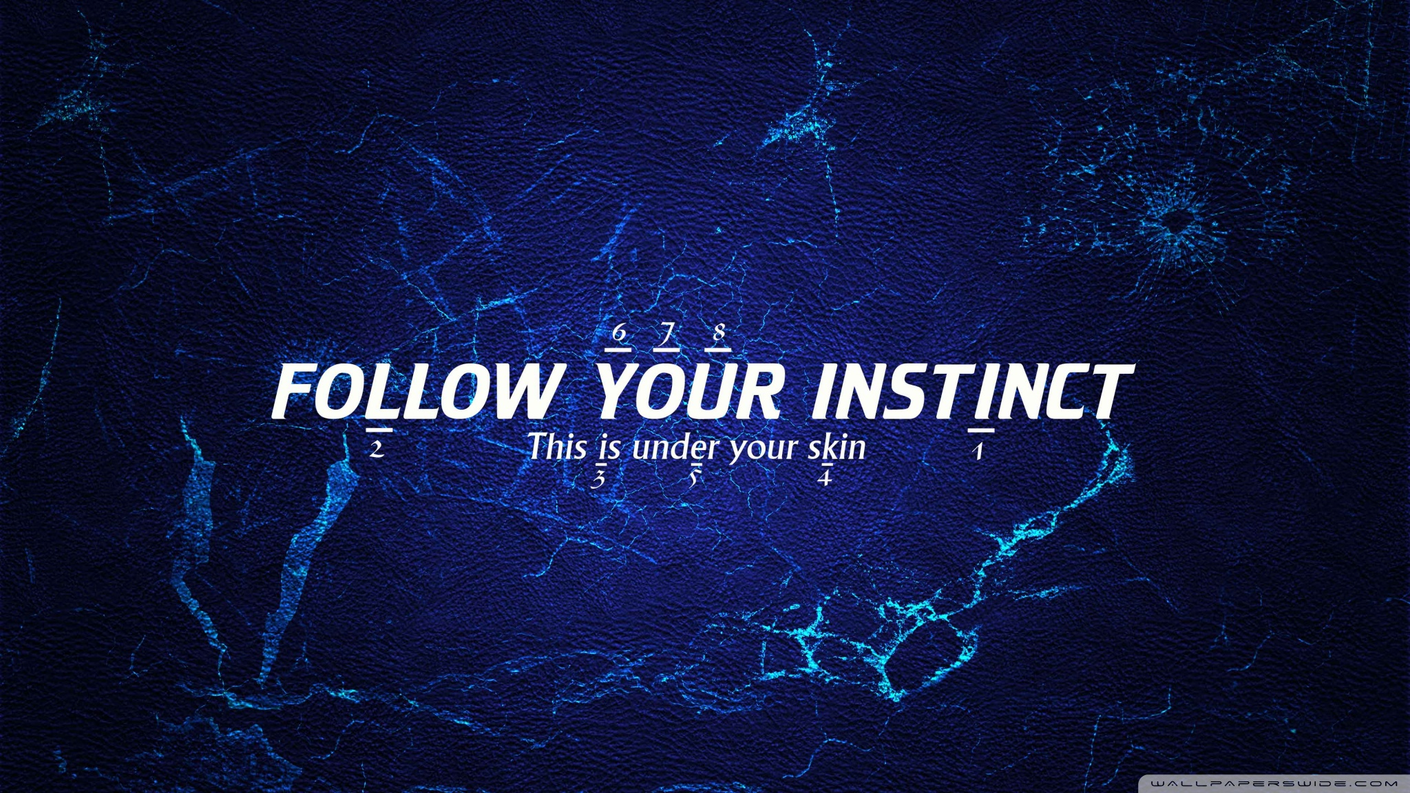 Instinct Wallpaper 20481152 Wallpaper 2048x1152