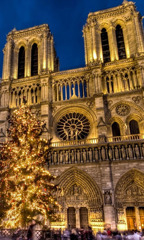 Notre Dame Download Blackberry iPhone Desktop and Android 480x800