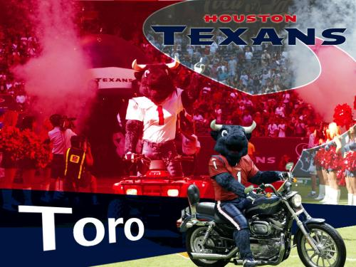 high definition houston texans houston texans houston texans toro 500x375