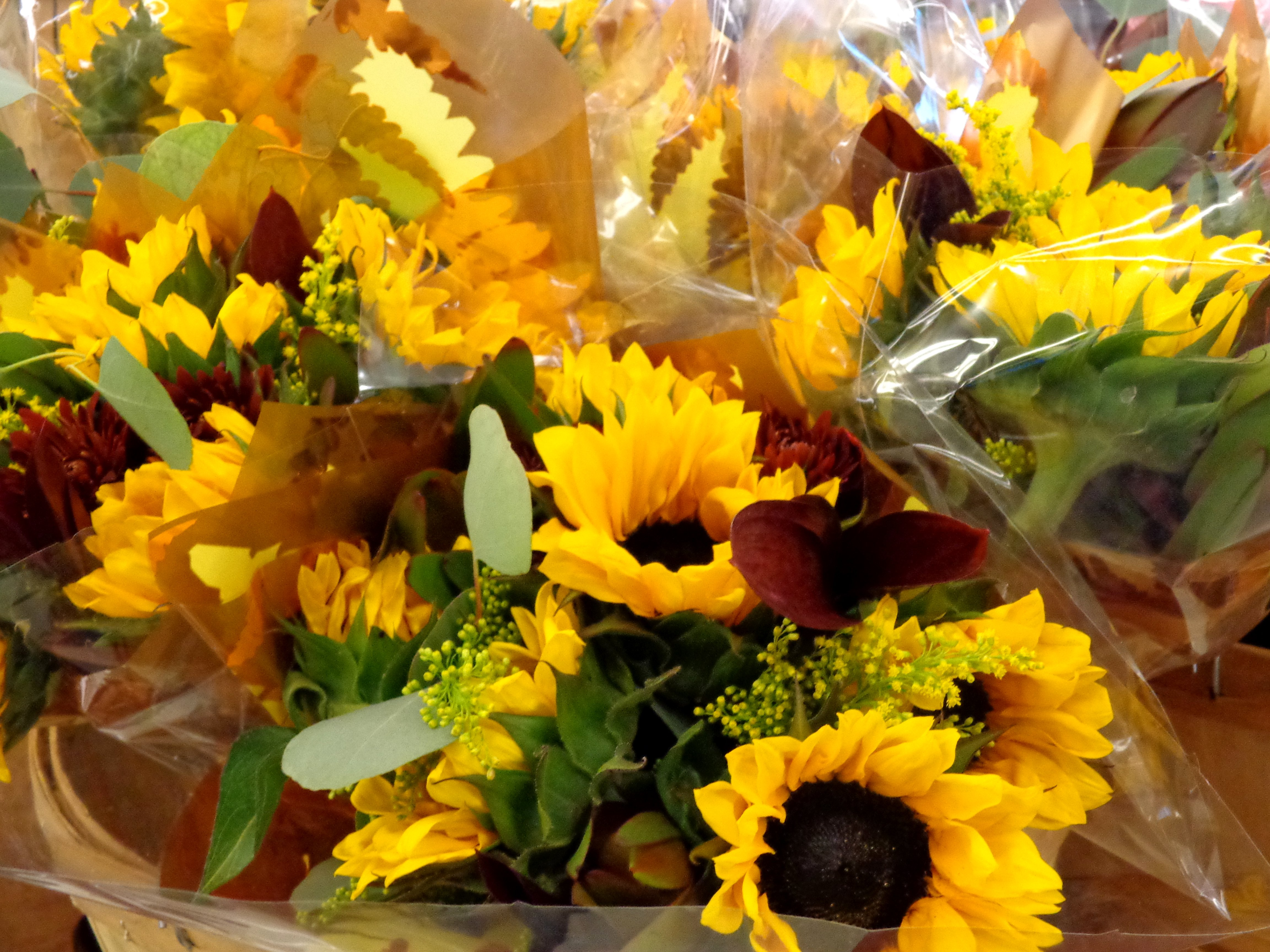 Autumn Flower Bouquets   High Resolution Photo   Dimensions 4608 4608x3456