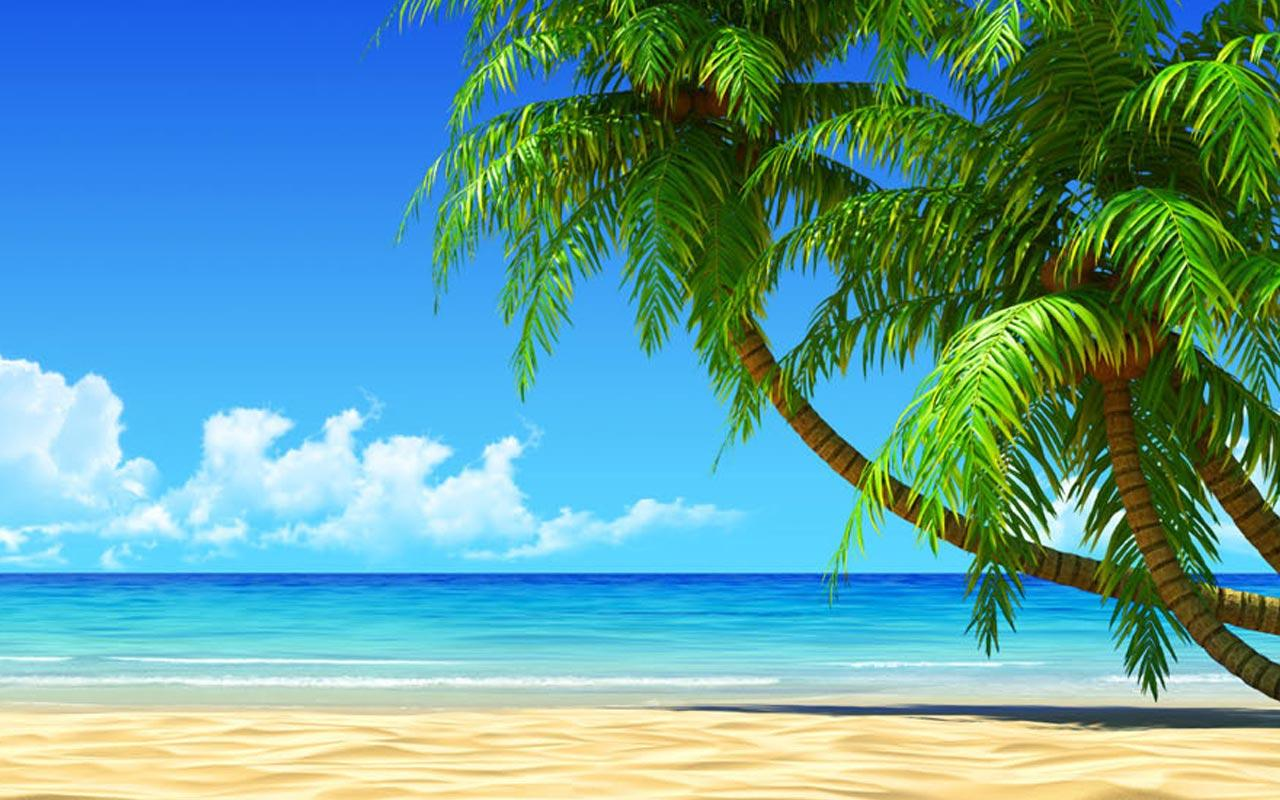 Showing pictures for Animated Beach Backgrounds 1280x800