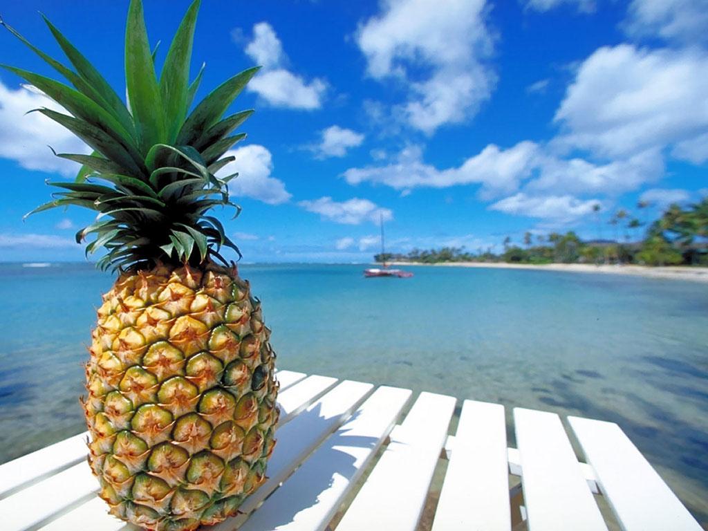 Pineapple Beach HD Wallpaper Fruits Wallpapers 1024x768