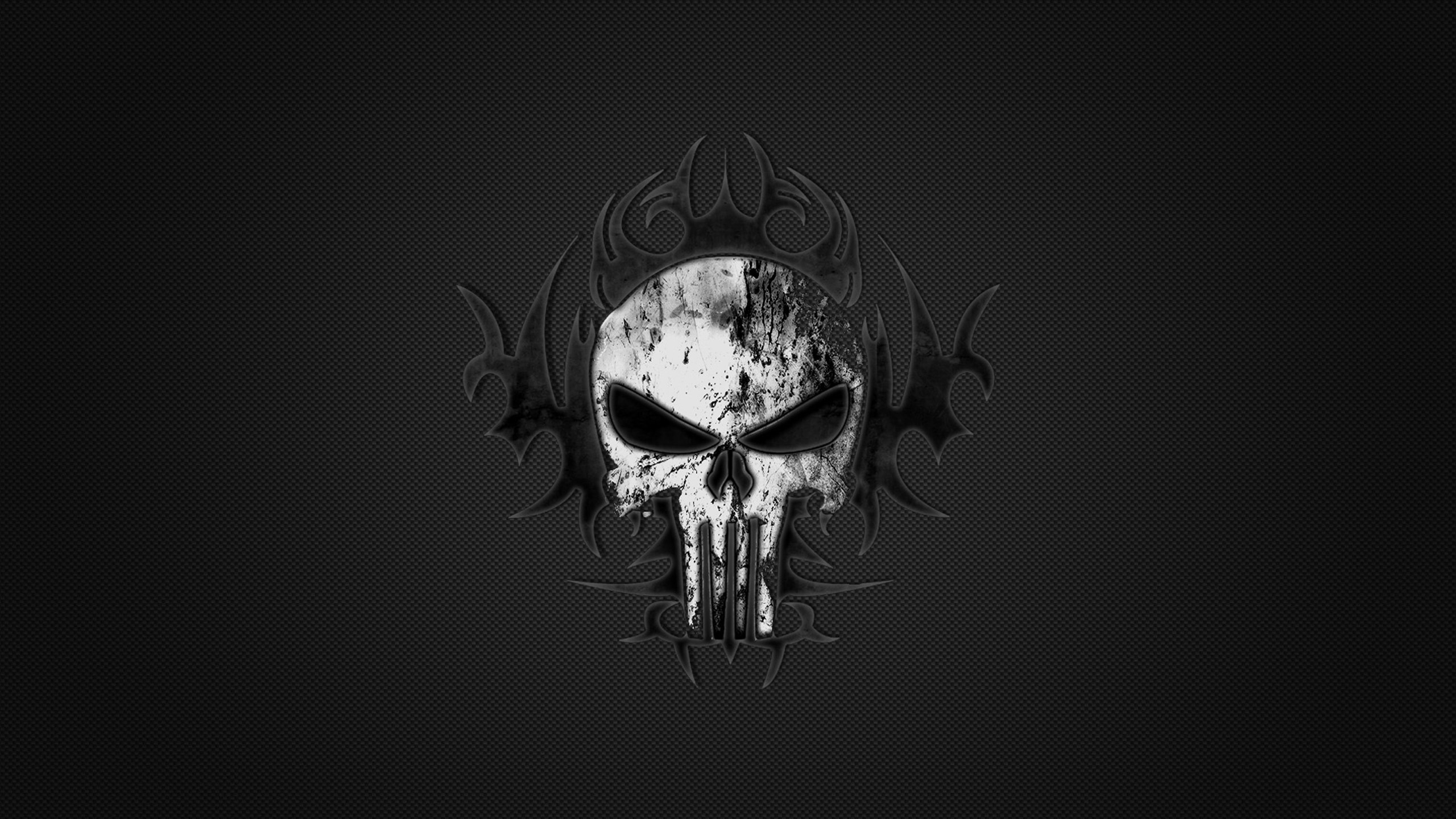 Punisher Skull wallpaper HD Desktop Wallpapers 2560x1440