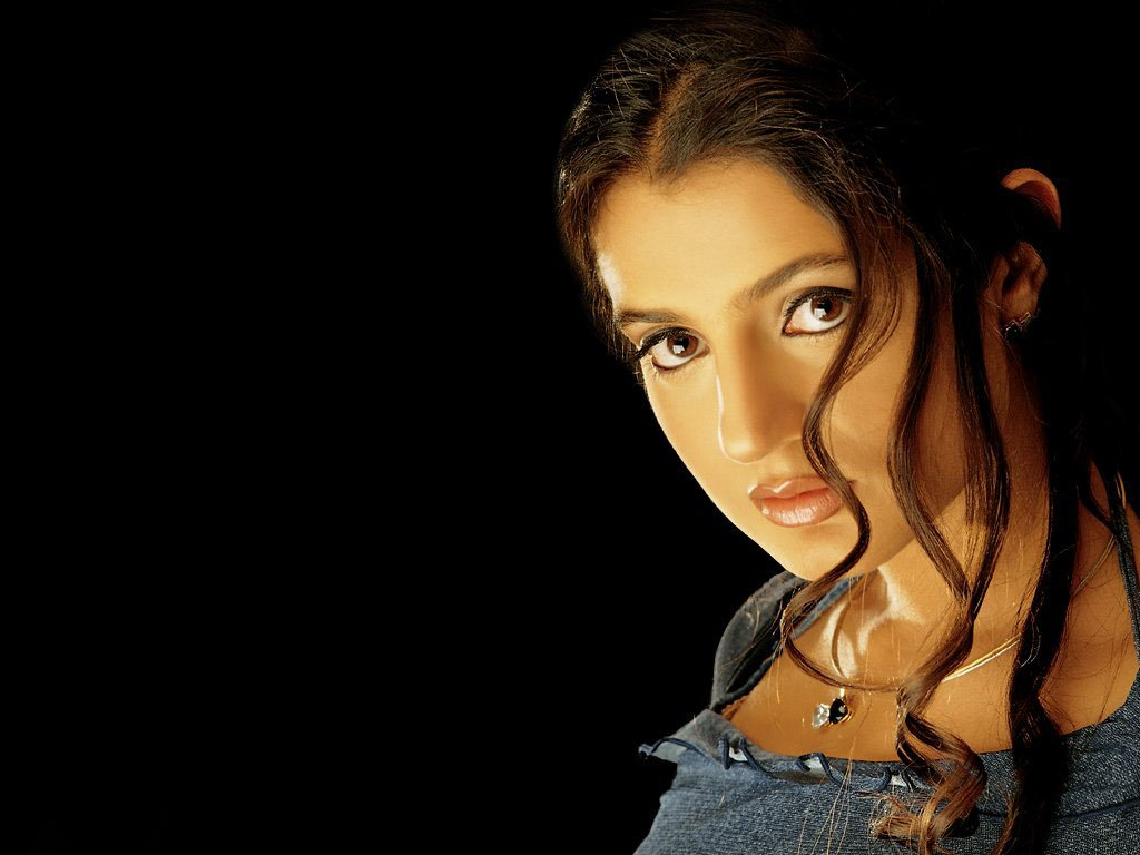 Amisha Patel Wallpaper 02 HD Wallpapers   High Definition Wallpapers 1024x768