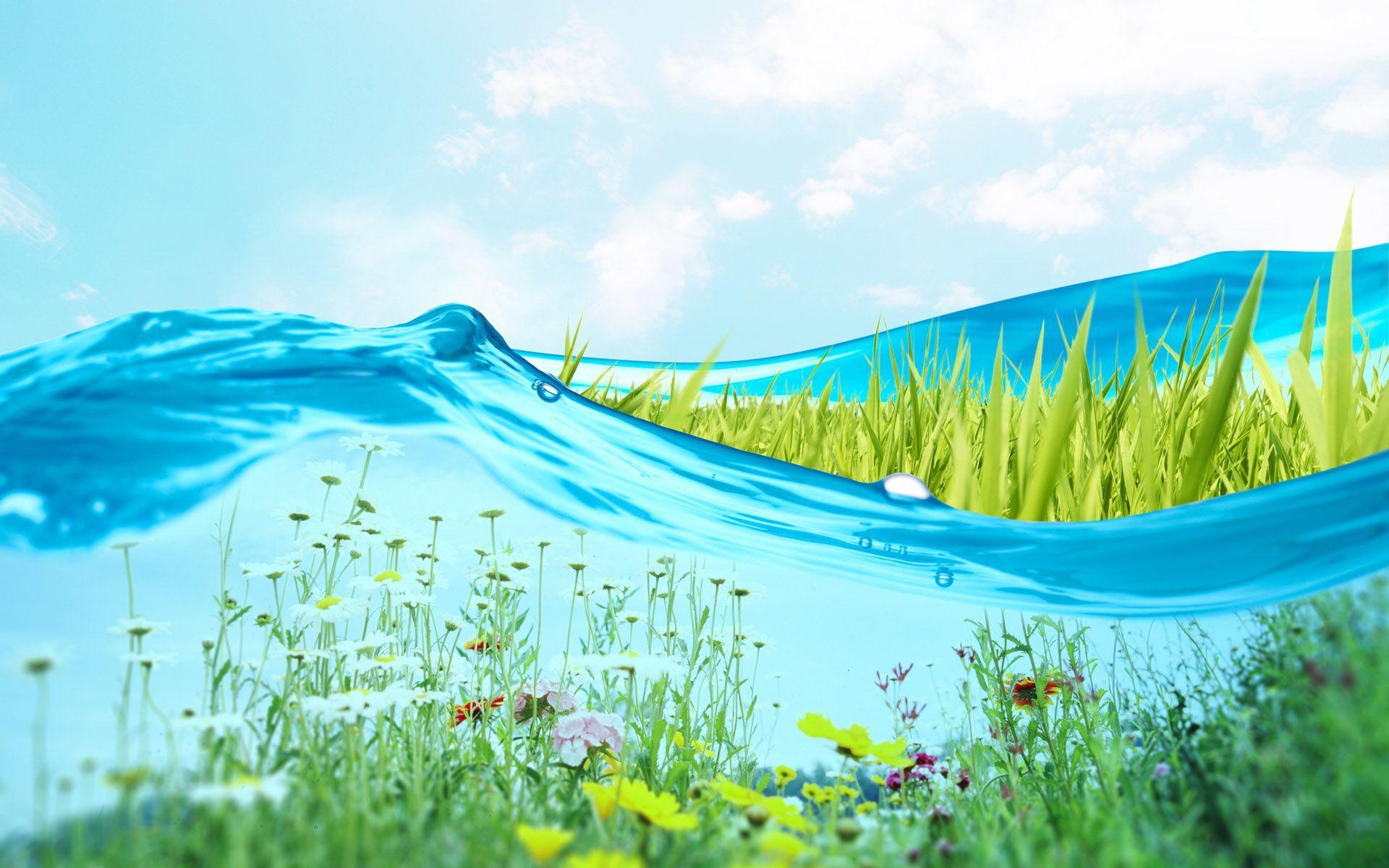Fresh Wallpapers   Top Fresh Backgrounds   WallpaperAccess 1920x1200