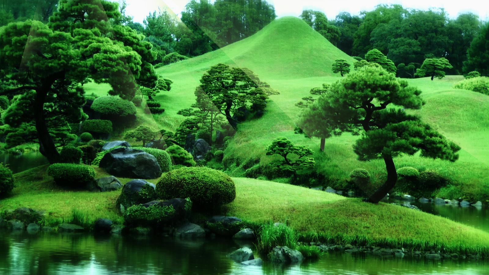Fond D écran Zen Nature