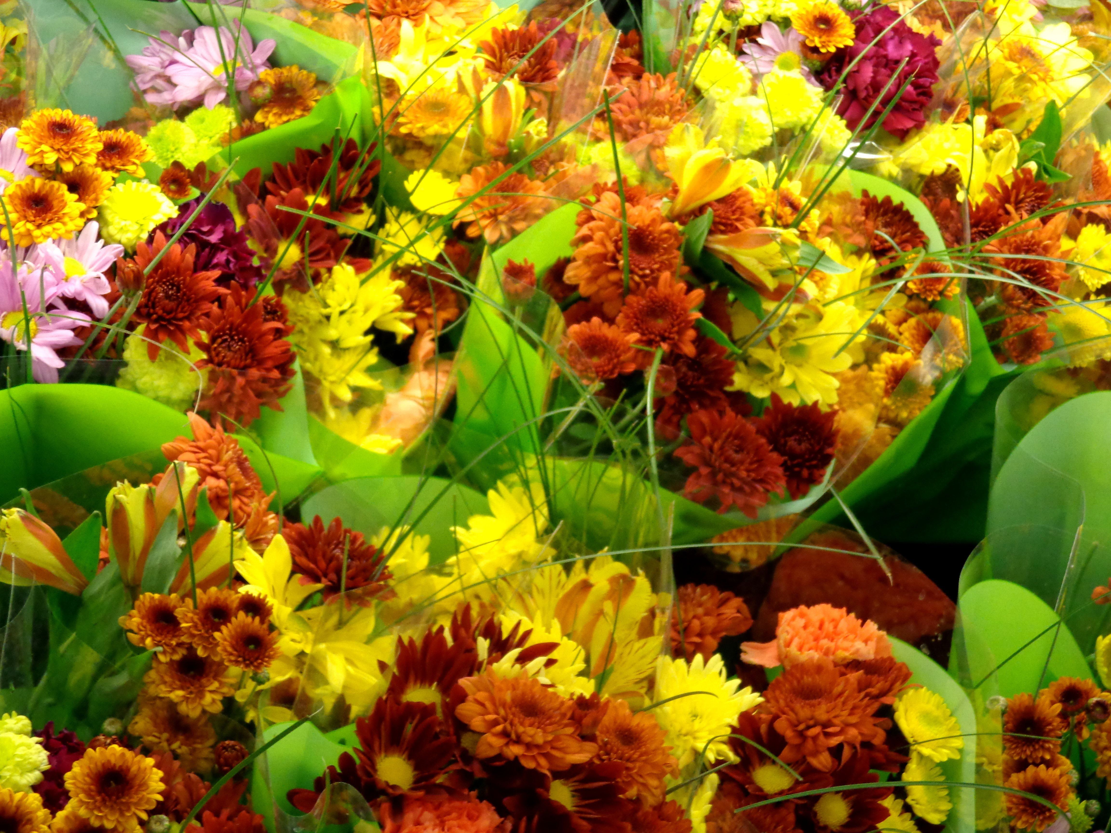 Fall Floral Bouquets Texture Picture Photograph Photos Public 4608x3456