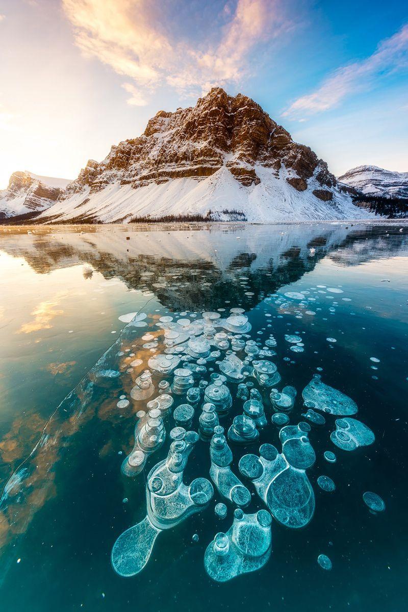 Stunning Frozen Methane Bubbles at Abraham Lake Canada Planet 800x1199