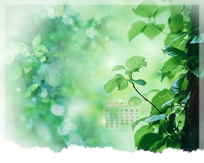 july calendar wallpaper   wwwhigh definition wallpapercom 700x560
