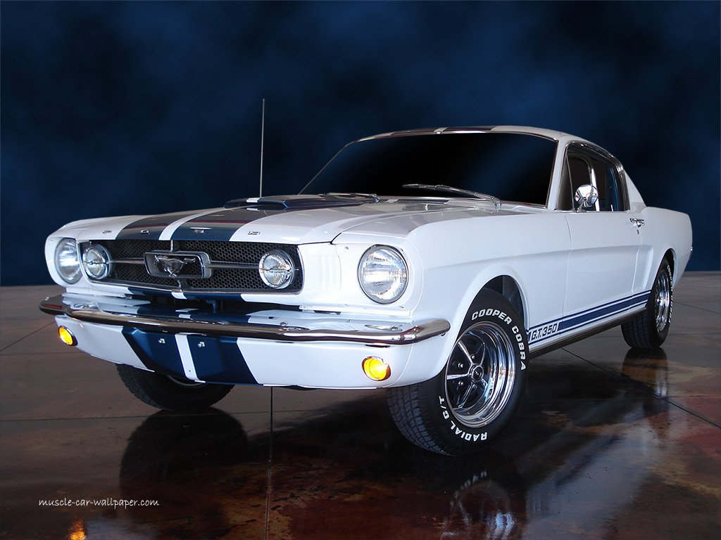 1966 Ford Mustang GT 350 Wallpaper   White Fastback   Left Front View 1024x768