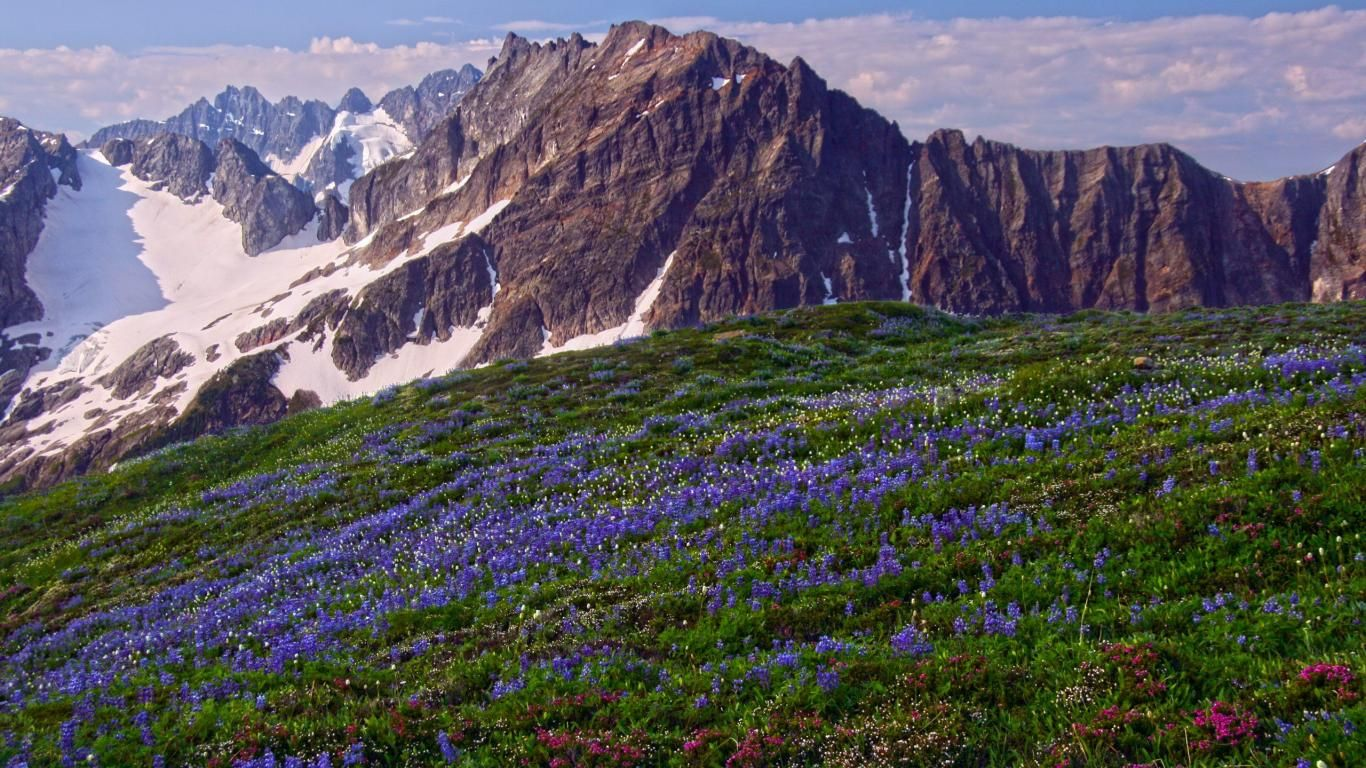north cascades national park Wallpapers Washington Park North 1366x768