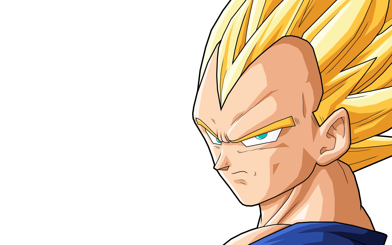 Vegeta Anime Wallpaper 2880x1800 Vegeta Anime Dragon Ball Z 2880x1800