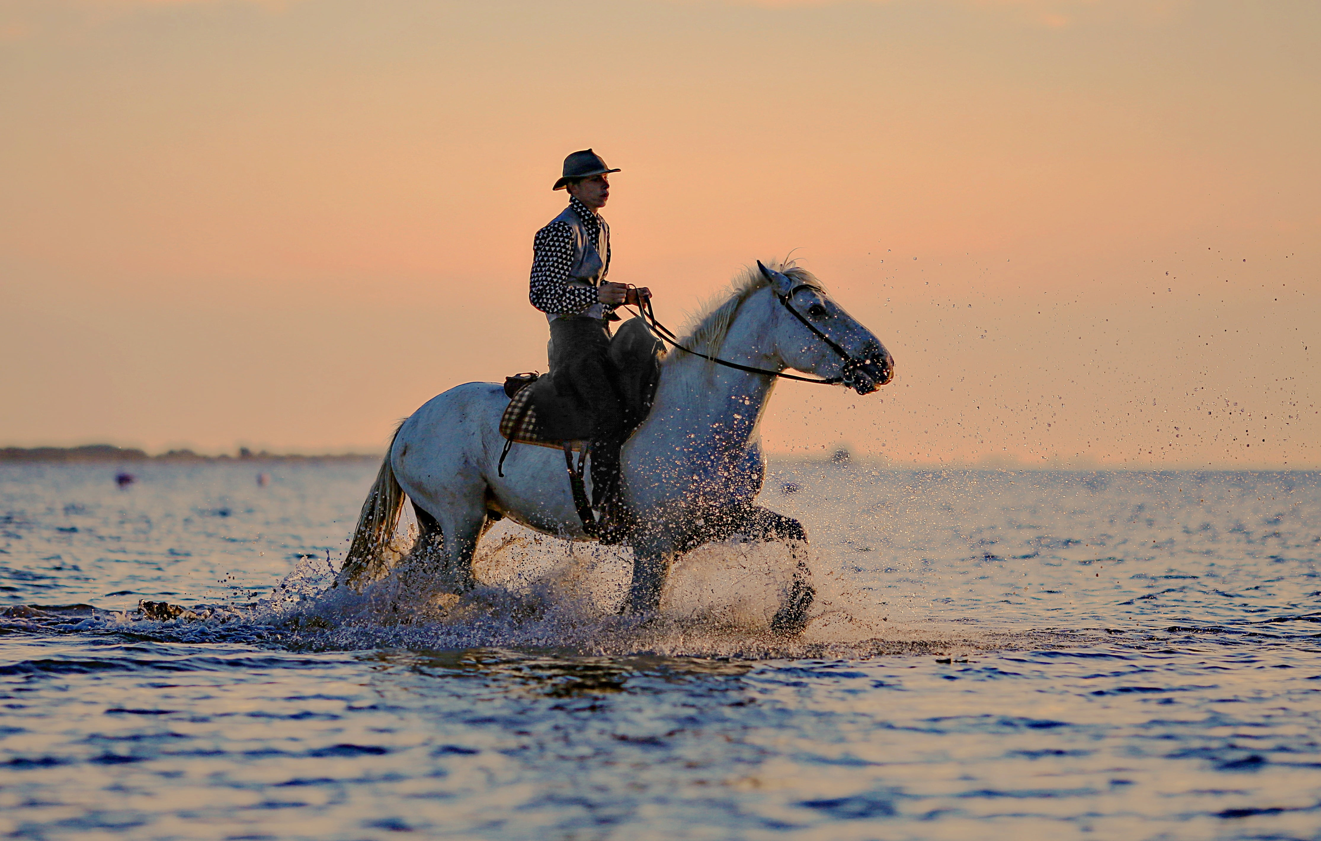 Man riding horse crossing the calm sea during daytime HD wallpaper 4459x2840