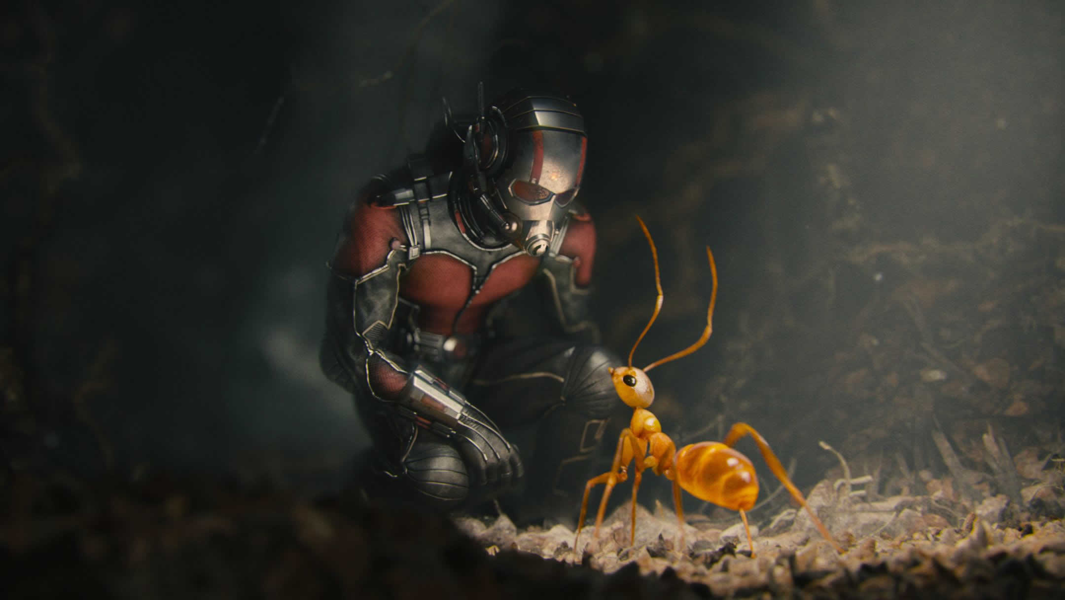 Ant Man Movie Wallpapers 2160x1216