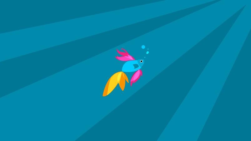 Pin Beta Fish Windows 7 Wallpapers Myspace 804x452