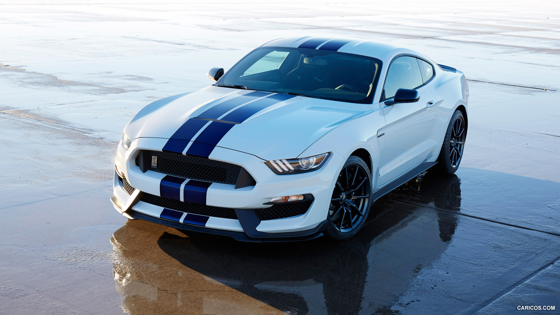 29 Ford Shelby Gt350 Wallpapers On Wallpapersafari