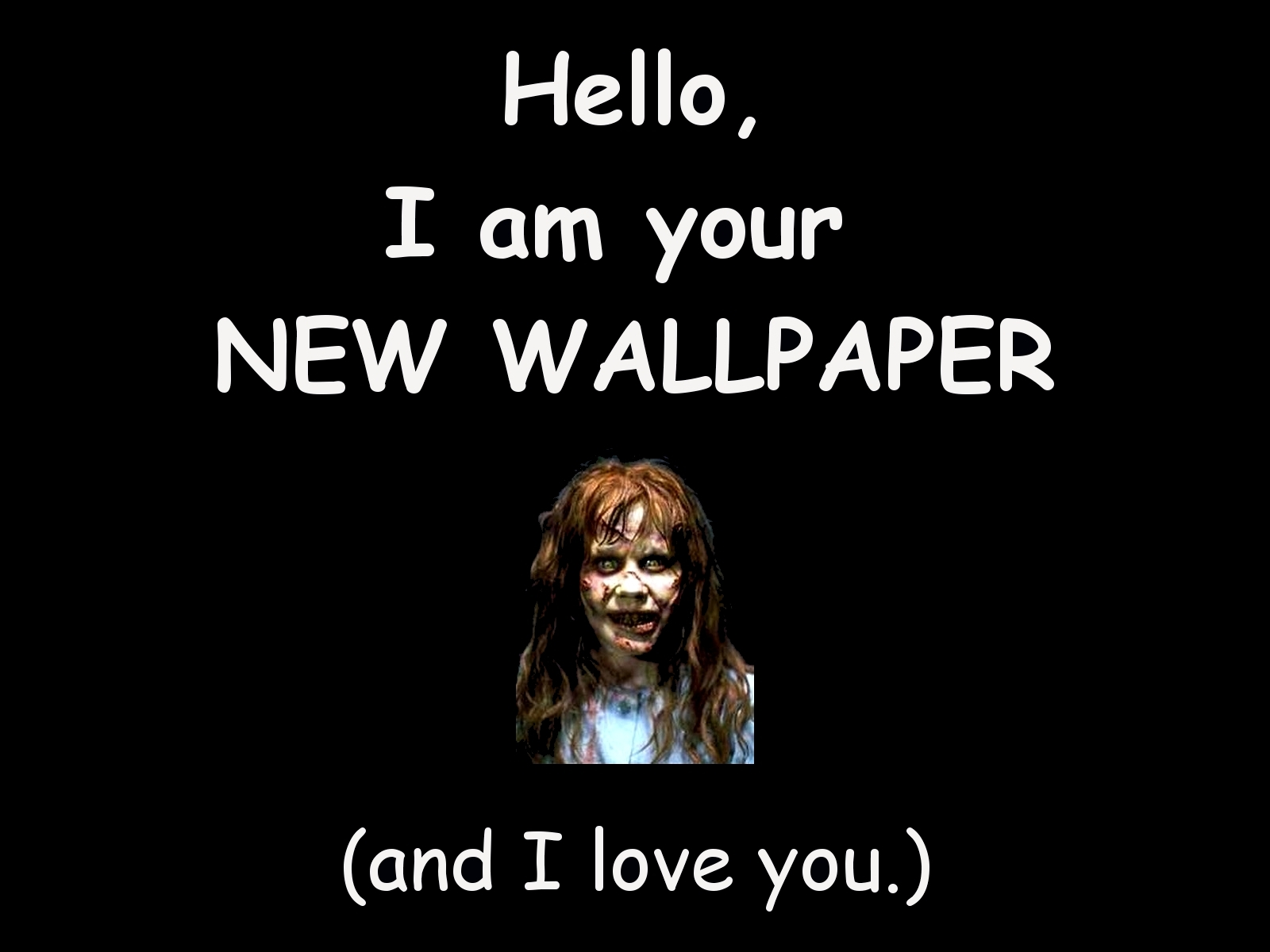 new wallpaper best funny wallpapers share this funny wallpaper 1600x1200