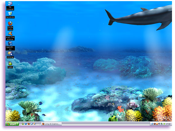 Living 3D Dolphins Wallpaper Animated 3D Wallpaper 580x434