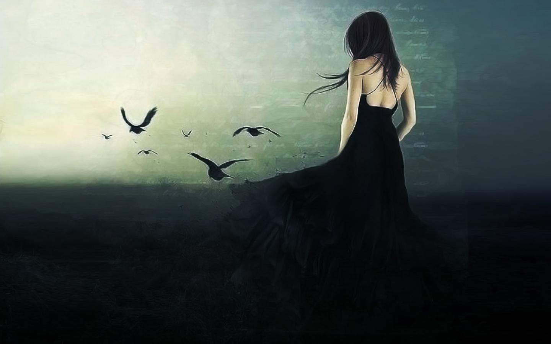Branch Bird Raven Hd Wallpaper HD Wallpapers 1440x900