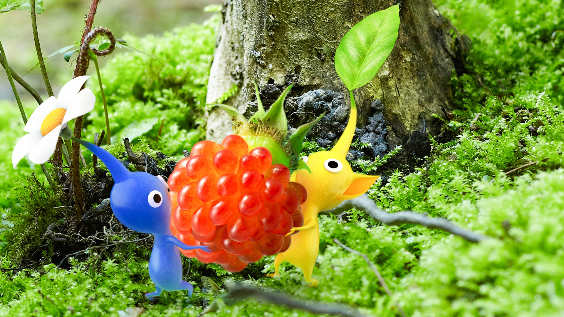 Pikmin New Amazing Wallpapers High Resolution   All HD Wallpapers 1920x1080