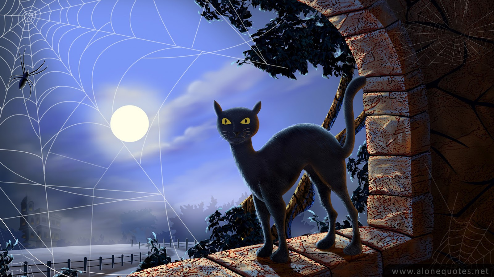 cat halloween wallpaper collection cat pumpkin halloween wallpapers 1600x900