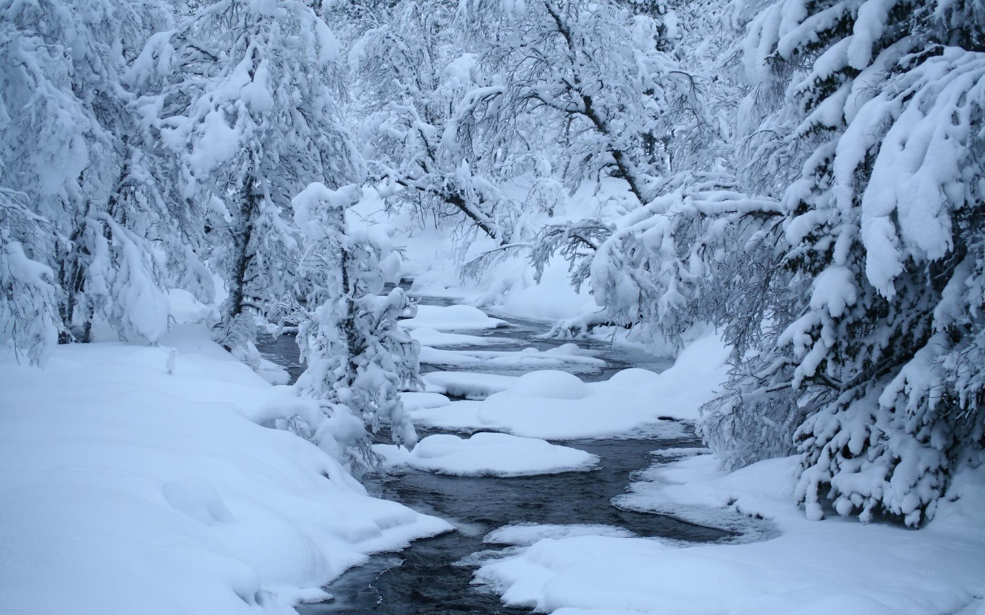 Winter River Snow Trees Hd Wallpaper Wallpaper List 1920x1200