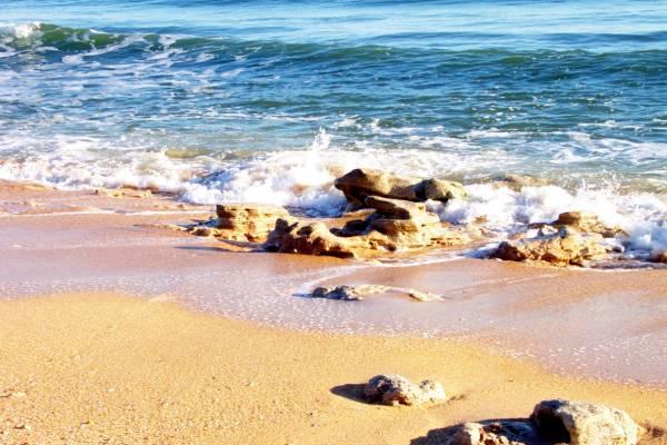 Palm Coast FL Coquina Rocks on Hammock Beach Palm Coast photo 600x400