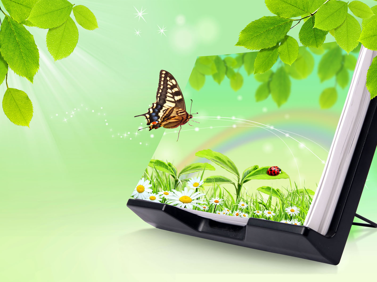Wallpaper 3d Butterfly   Wallpapers And Pictures 1600x1200