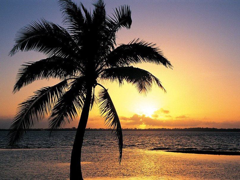 Tropical Island Sunset wallpaper   ForWallpapercom 808x606