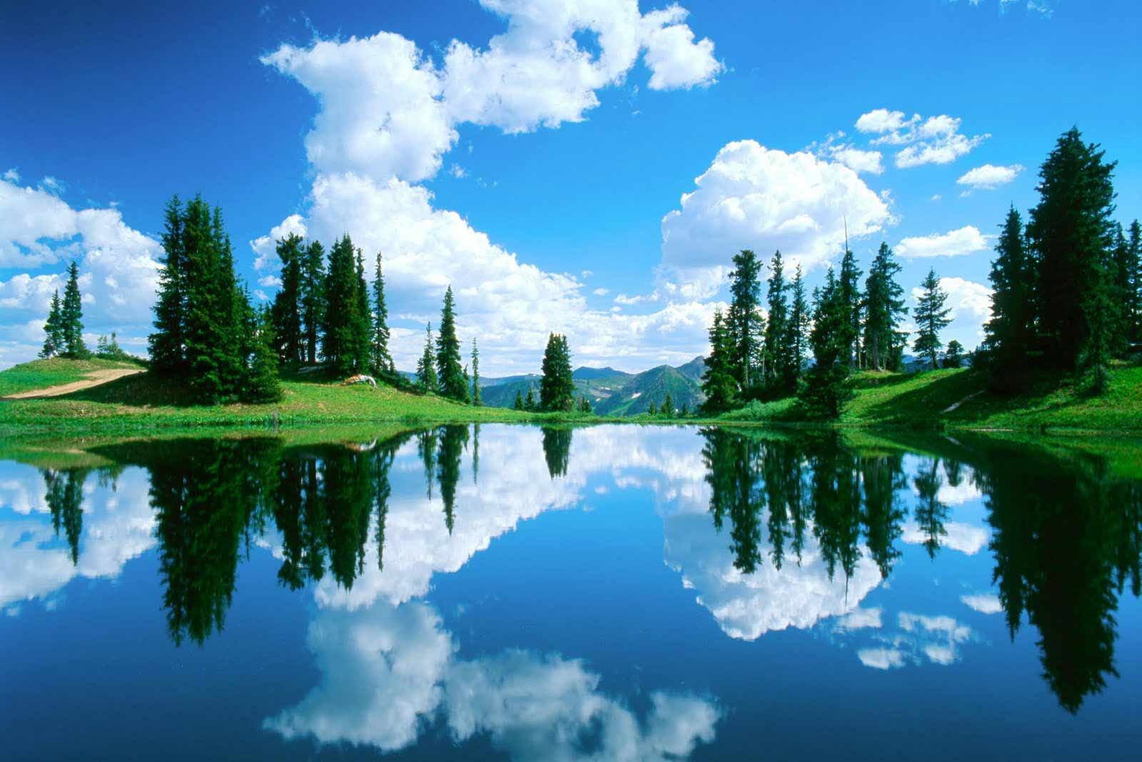 Free Download Amazing Beautiful Nature Wallpapers Hd Hd Nature