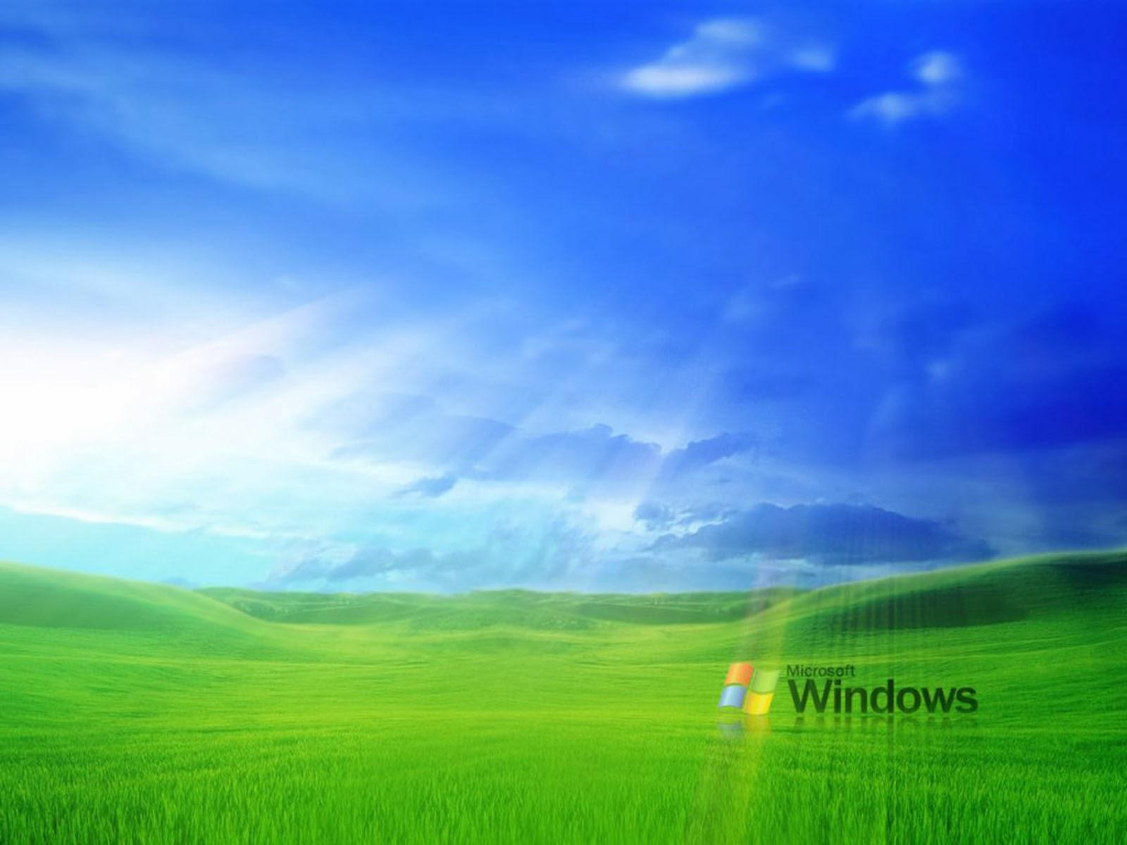 wallpapers Grass Windows XP Wallpapers 1600x1200