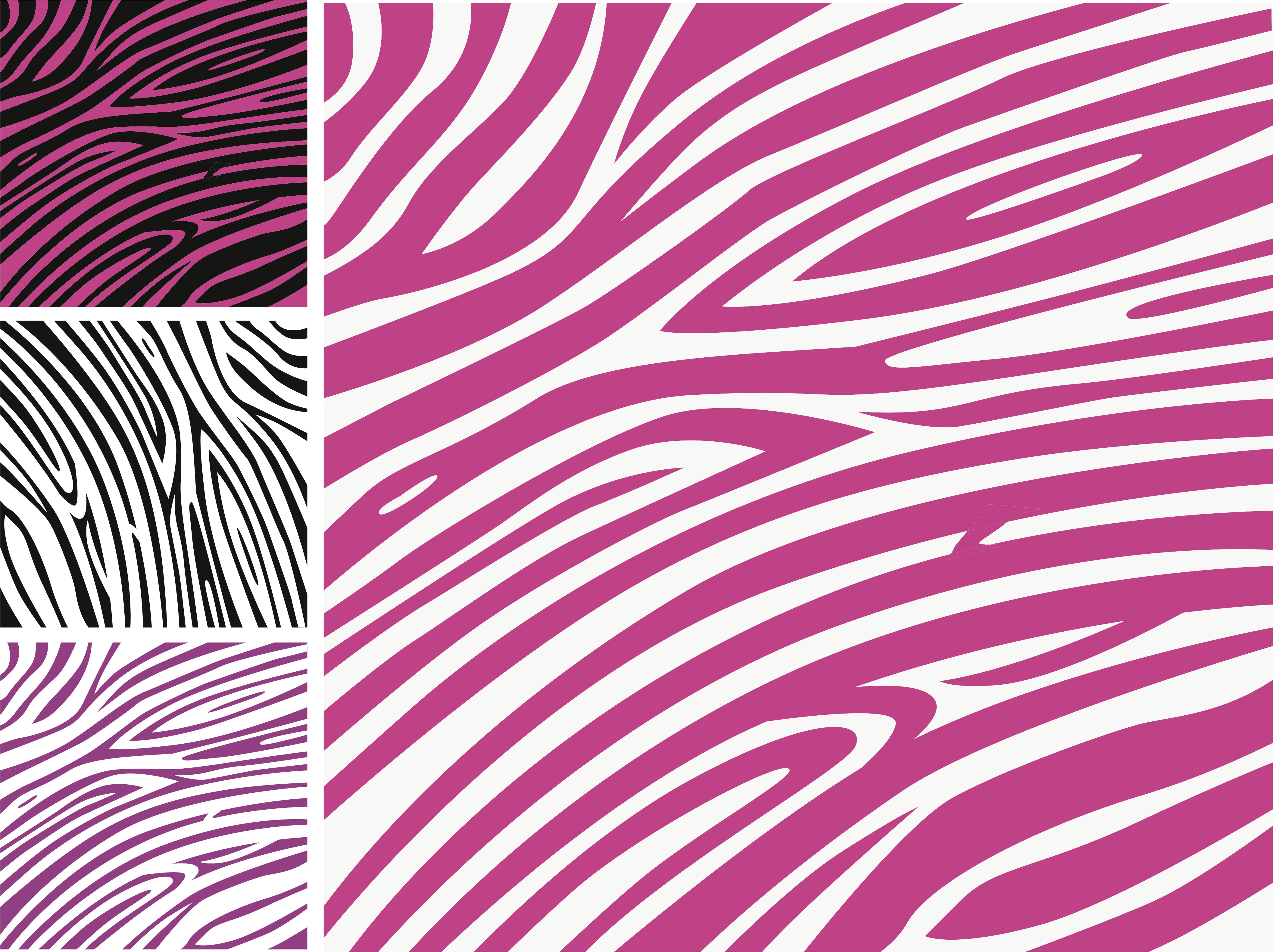 Zebra Wallpaper 4227x3162