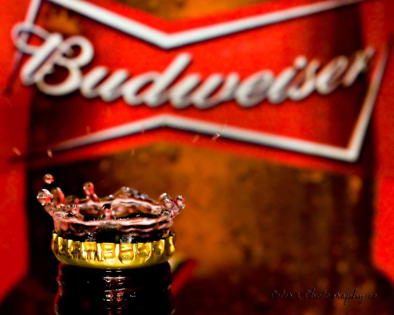 Budweiser Desktop Wallpaper
