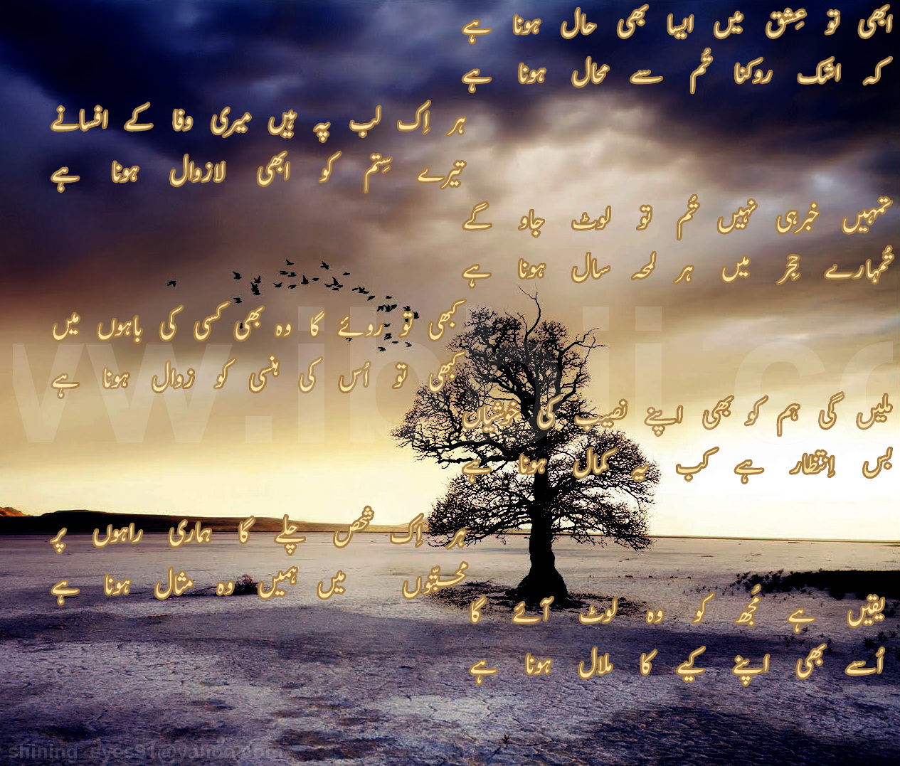 25 Sad Images With Quotes In English Download Free Hd: Sad Urdu Poetry HD Wallpaper
