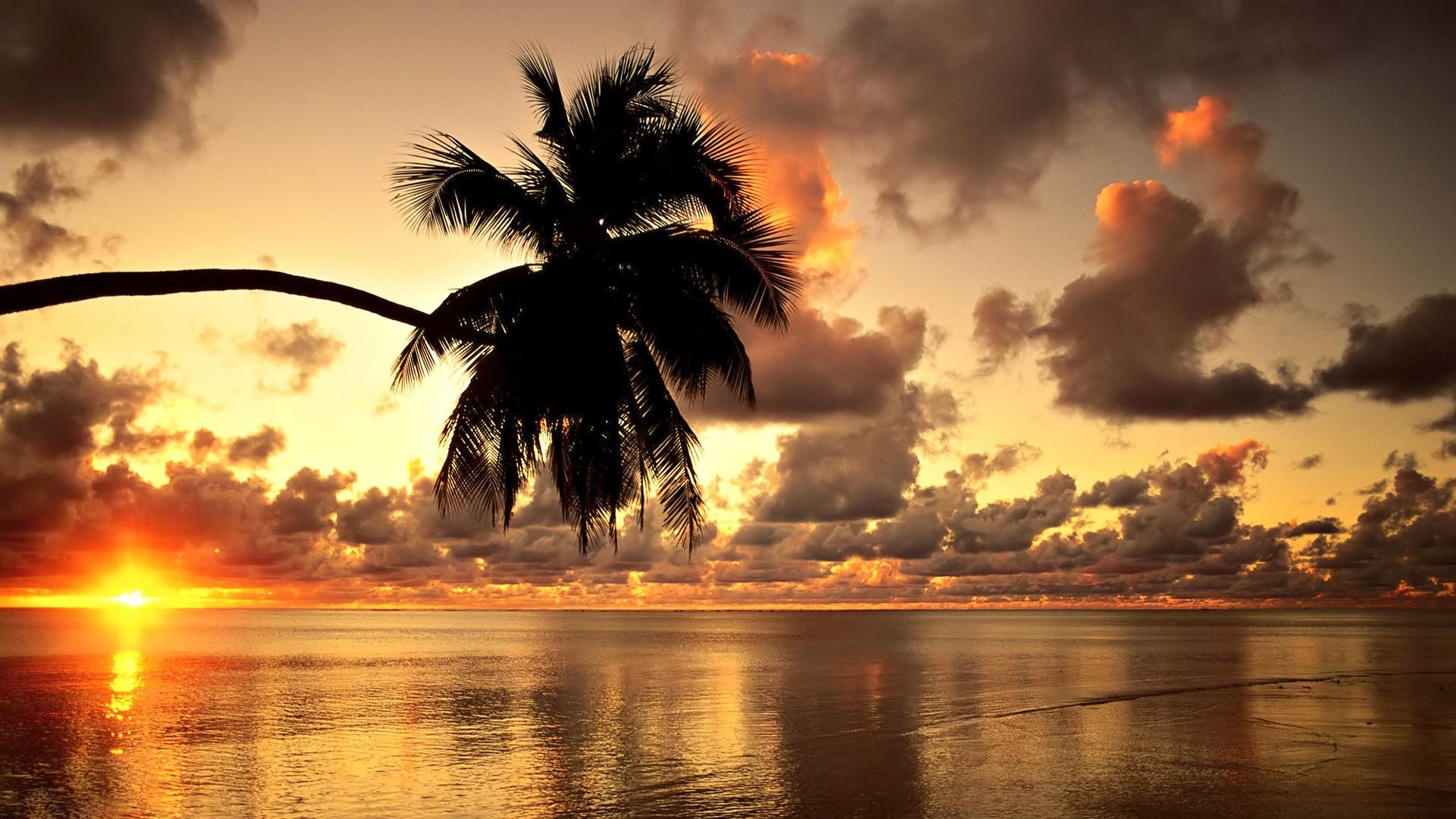 Hawaii Beach Sunset Landscape Clouds Nature 1920x1080