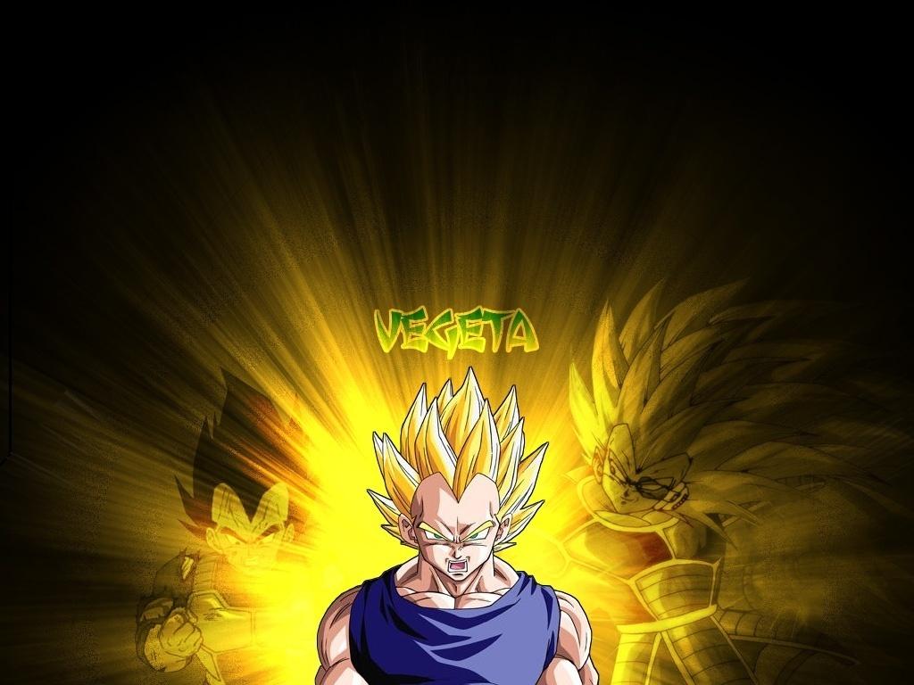 VEGETA Vegeta 1024x768