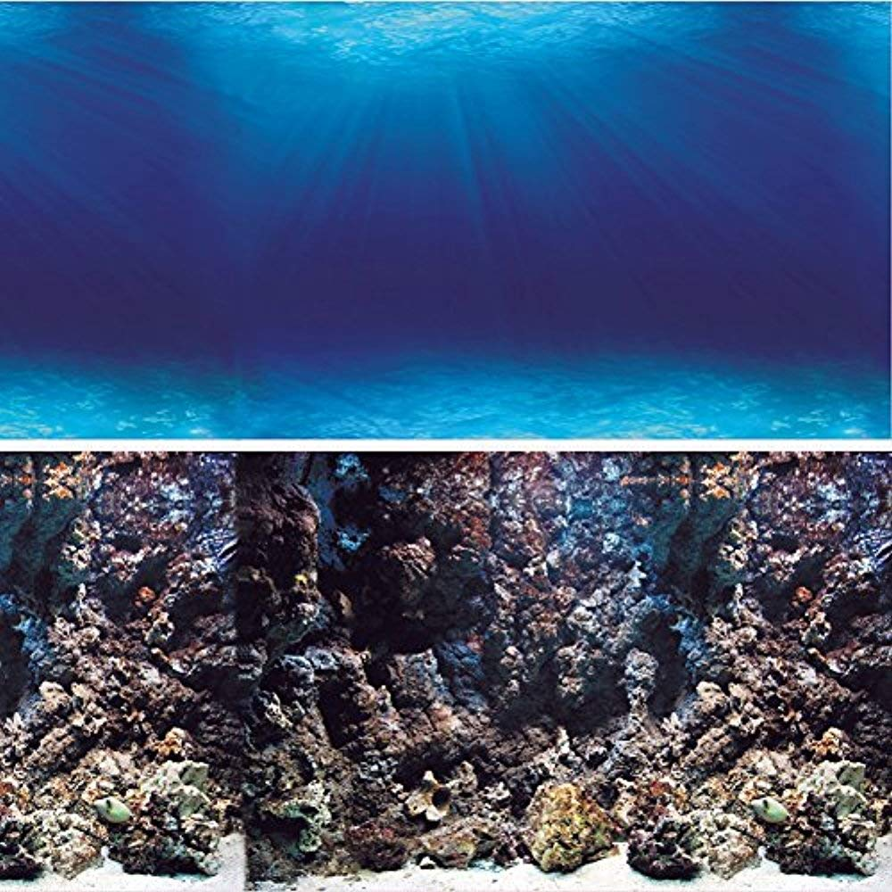 Amazoncom Vepotek Aquarium Background Deep SeabedCoral Rock 1000x1000